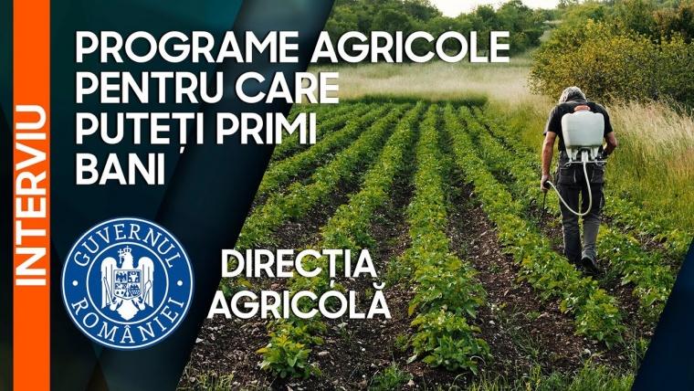 Ajutoare de stat și ajutoare de minimis pentru fermieri