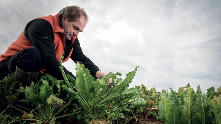 Fermierul român vs Agricultura sustenabilă