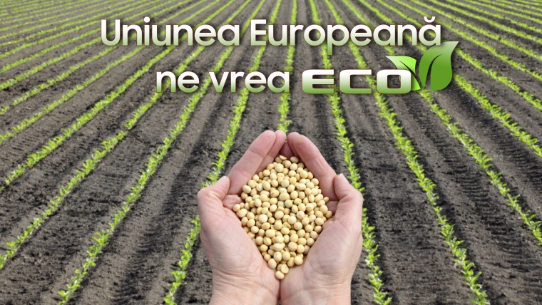 Ce sunt ECO-schemele și cum ne ajută