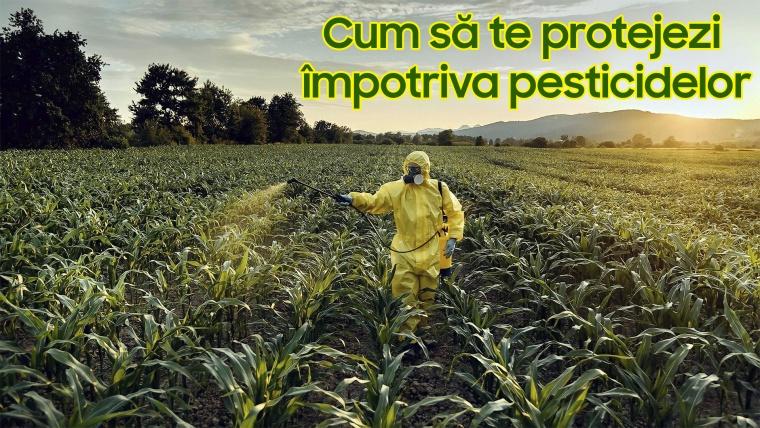 Pesticidele și riscurile folosirii lor (partea a II-a)