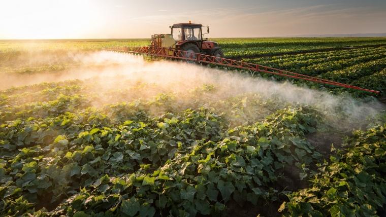 Cum să ne protejăm de efectele nedorite ale pesticidelor (partea I)