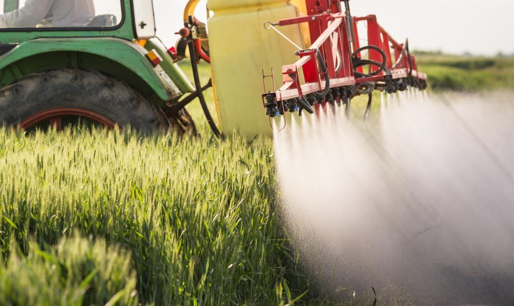 Reguli și măsuri de prevenție în folosirea pesticidelor (partea a II-a)